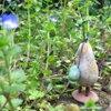bud 粘土の鉢植え屋