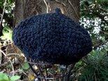 ポコポコ編み地のニット帽の画像