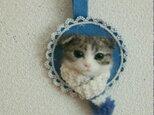 スコ*マフラー猫オーナメントの画像