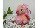フシギなトリのヒナ(ピンク)の画像