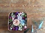 spring box (candy)の画像