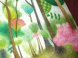 色鉛筆画ポストカード4種の画像