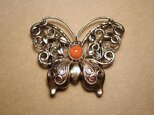 サンゴ 胡蝶の帯留[hw34]の画像