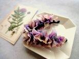 紫陽花のバナナクリップ ■ 水彩画トーン 紫陽花 ■ モーブの画像