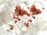 Coral earringsの画像