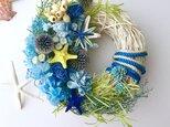Starfish wreath Ⅳの画像