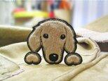 ダックスフンド★ふさふさ犬ワッペン★クリーム/レッド-Aの画像