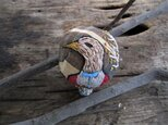 鳥きのこの画像