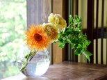 泡まる花瓶の画像