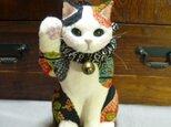 黒を基調の招福招き猫 座布団付の画像