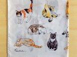 猫のハンカチの画像