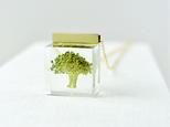 本物植物 ブロッコリーのネックレス 14kgfの画像