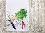Fresh Vegetables 青菜のカードの画像