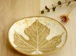 ぶどうの葉 *皿  小物入れの画像