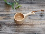 コーヒーメジャーS ブナの画像