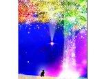 「星の樹の下で」 ほっこり癒しのイラストポストカード2枚組No.635の画像