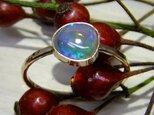 black opal*14kgf ringの画像