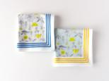 手刺繍入りハンカチ ・meadow flowers/ 水色地×イエローラインの画像