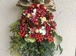 赤い実のクリスマス(サンキライ)の画像
