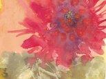 原画 赤い花-red flower-の画像