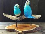 青色の鳥 ななん様オーダー品 の画像
