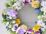 再販 花のワルツのように パンジーとレースフラワーのリース :春  黄色 白 紫の画像