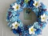 Summer Wreath ~Grand Bleu~ 26cm(プリザ)の画像