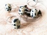 Dalmatian Jasper ringの画像
