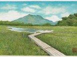 夏の尾瀬ヶ原の画像