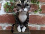 ライ様専用★手乗り★羊毛フェルト☆オーダー ペット 愛犬 愛猫の画像
