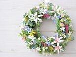 order yさま  オーダーのページ 夏草花のリース ピンクと白のダイアモンドリリーの画像