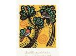 多色摺木版画「鳥の時間ーサンコウチョウ」額付きの画像