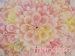 四季曼荼羅 桃花の画像