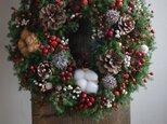 サツマスギとバラの実のクリスマスリースの画像