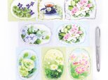 花のメモ Aセット 8種40枚の画像