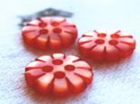 (3個) デイジーのボタン フランス製の画像