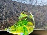 グリーンイエローのガラスの鳥✱ご注文前に在庫の有無をお問い合わせ下さいの画像