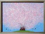 【原画】桜の画像