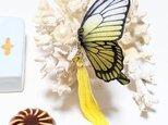 蝶のピアス(大)アゲハの画像