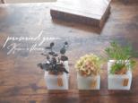 【3個セット】ワックスベースのインテリアグリーン アンティークあじさい 卓上グリーン 観葉植物 風の画像