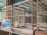 木と竹の鳥かご【W430mm×H600mm×D430mm】の画像