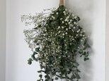 atelierBLUGRA八ヶ岳〜フレッシュユーカリとかすみ草のスワッグ001の画像