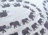 アジアゾウが1匹だけいる「象」の手ぬぐいの画像