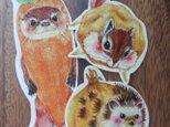 カレーアニマルカードの画像