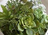 kitchen green L(white)の画像