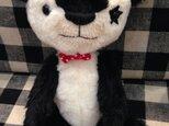 Rock Panda!の画像