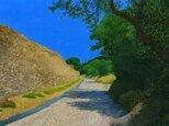 サン・レミ・ド・プロヴァンス~ゴッホの道 Ⅳの画像