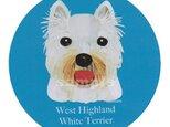 ウェスト ハイランド ホワイト テリア《犬ステッカー/小型犬》の画像