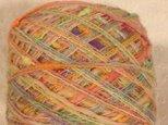 引き揃え糸 オレンジ系カラフルノット 80gの画像