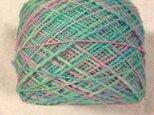 手染め糸 425⑳ 166g ウール100の画像